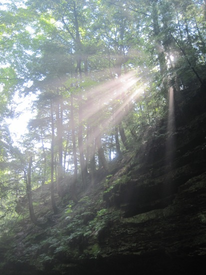 Magical mist and morning sunbeams at Turkey Run SP on Trail 3; photo by quirkyjazz, aka Jill