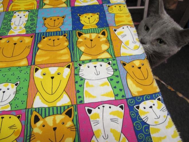 Zita with smiling cat fabric.