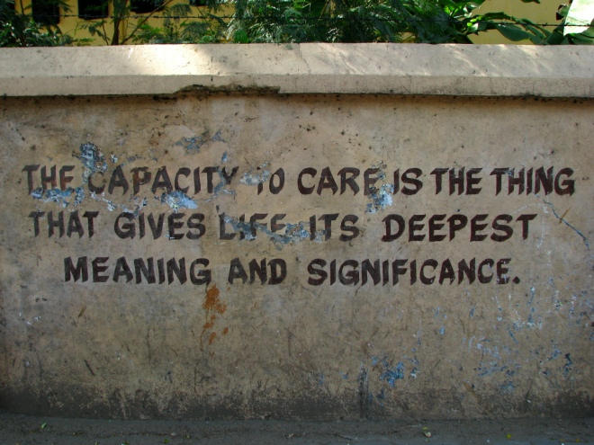The capacity to care is the thing that gives life its deepest meaning and significance.