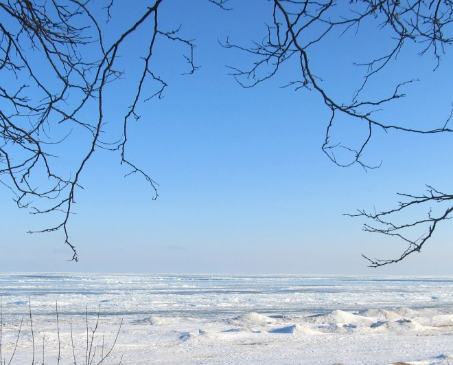 Lake Michigan ice; March 8, 2014.  Image by The Tromp Queen, CC license