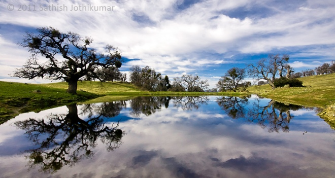 Reflection on Johnny's Pond by Sathish J